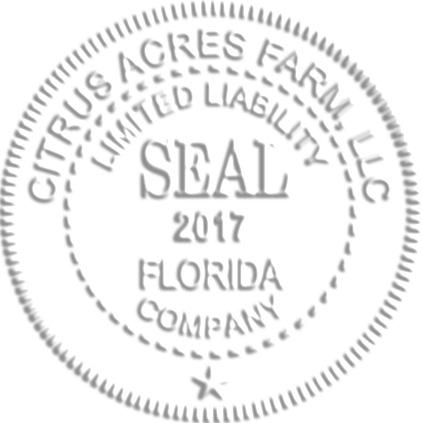 Limited Liability Company with Date Seal Embosser